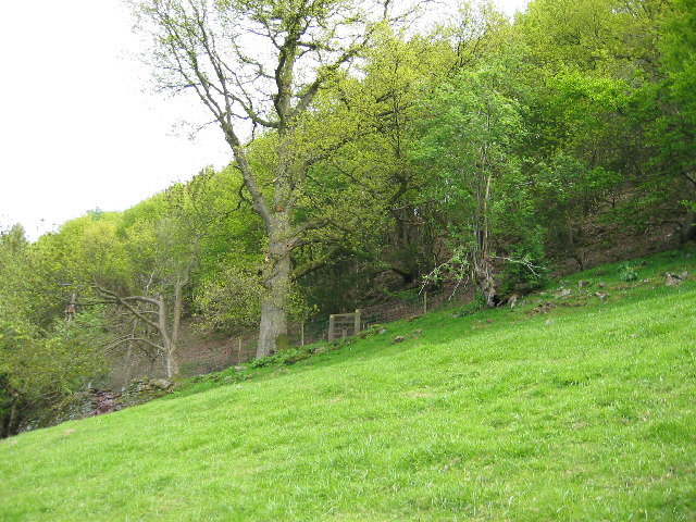 Near Pont Newydd