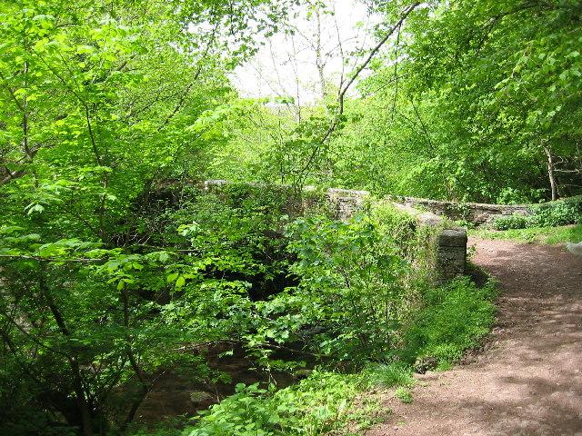 Bridge over the Grwyne Fechan
