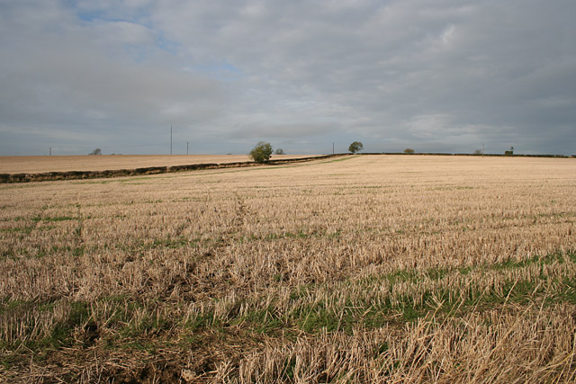 Farmland near Garthorpe