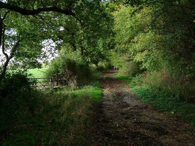 Footpath to Downham Rd
