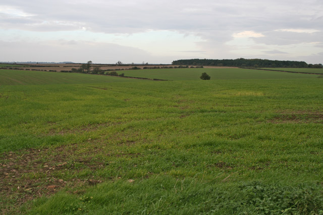 Farmland near Wymondham