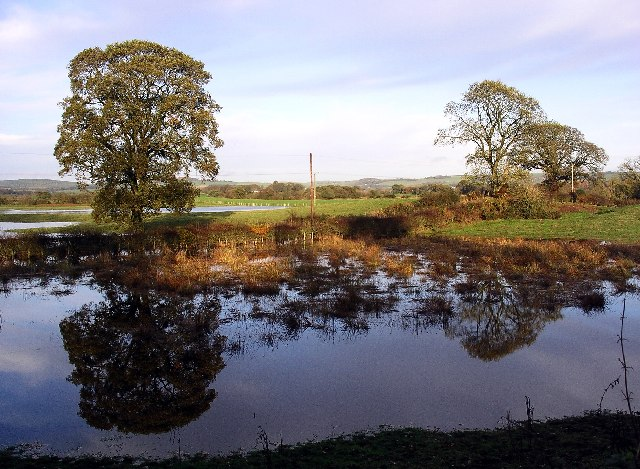 Reflections in flooded fields near Lochmaben