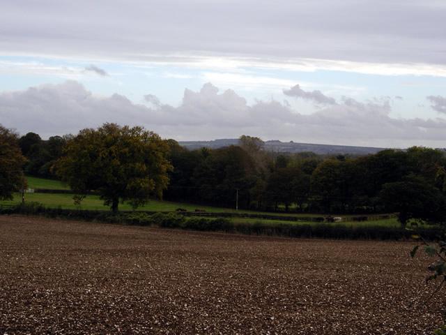 Farmland north of Littleton Stud