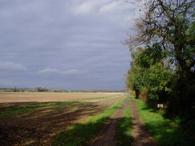 Arable land on Rectory Farm