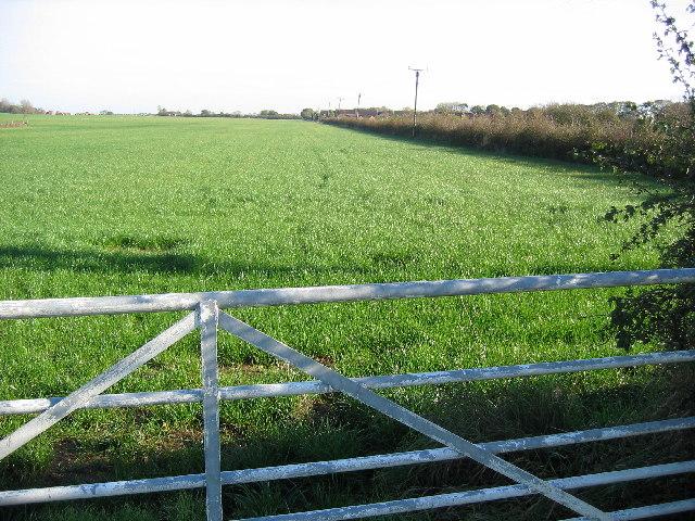 Farmland near Hornsea Mere