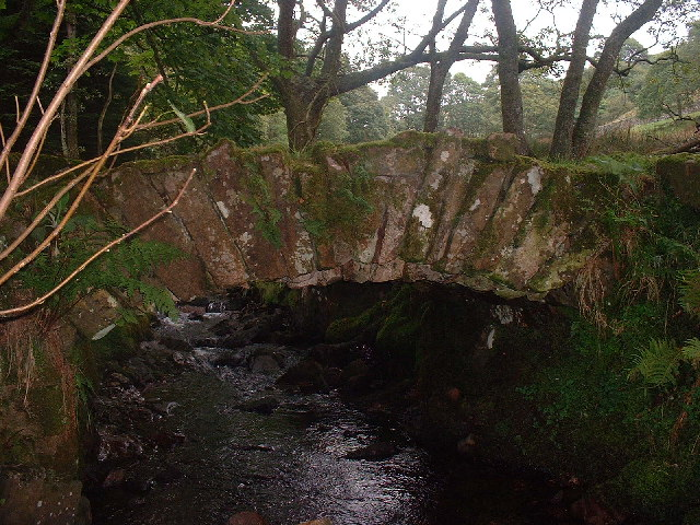 Packhorse Bridge River Mite
