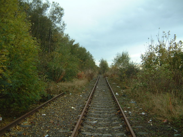 Train line through Usworth