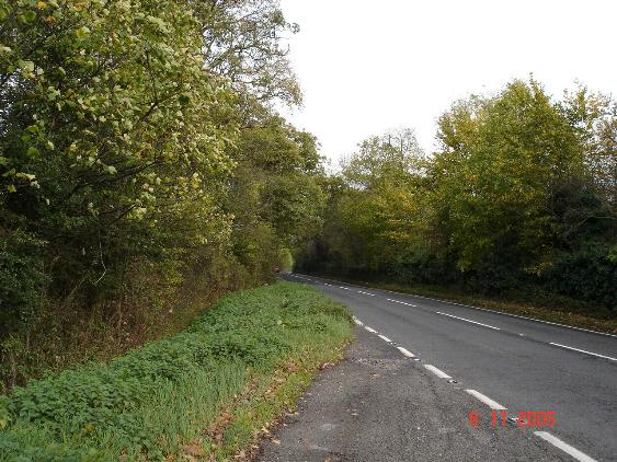 A543 in Autumn Glory