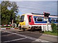 TL4451 : Train on the Little Shelford level crossing by David Gruar