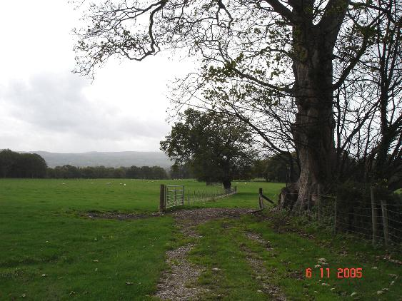 Farmland near Plas Ashpool