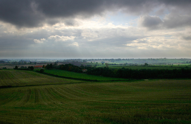 Low Fields near Bulmer, North Yorkshire