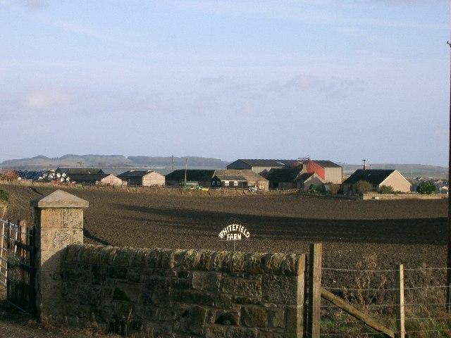 Whitefield Farm.