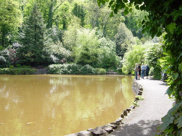 Park and lake, Cockington gardens