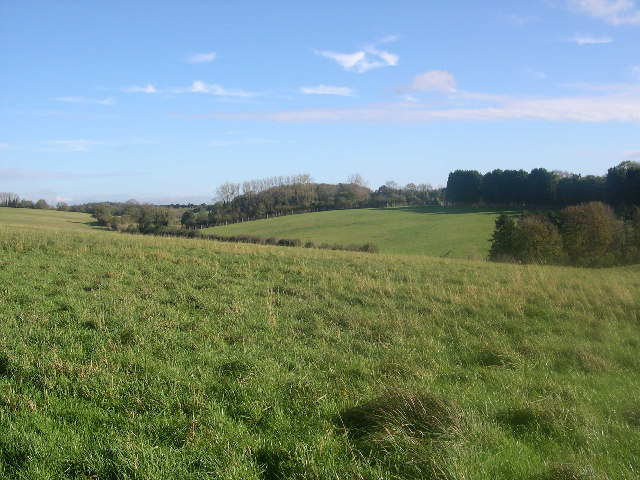 Fields behind Marwell Zoo