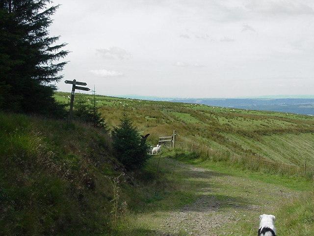 Cefn Ffordd near Glyncorrwg