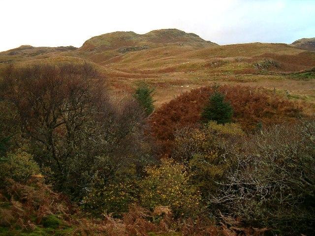 Moorland above Torran, Ford, Argyll