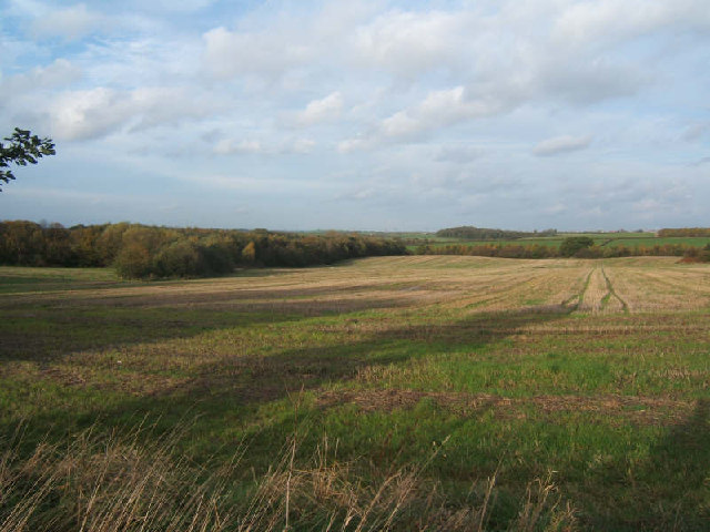 Stubbs wood and farmland.