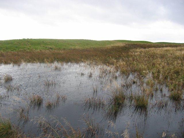 Flooded bog, Walstone Muir.
