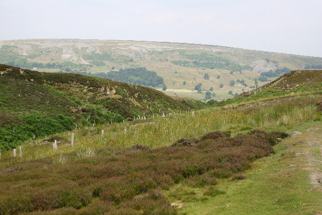 Ancient Earthworks above Grinton