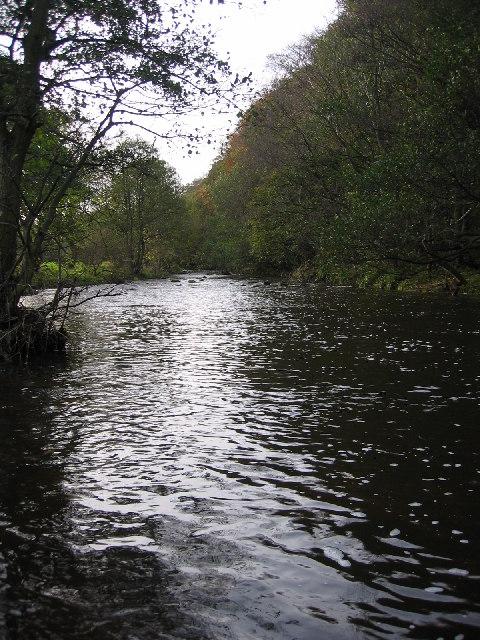 Derwent River at Allensford