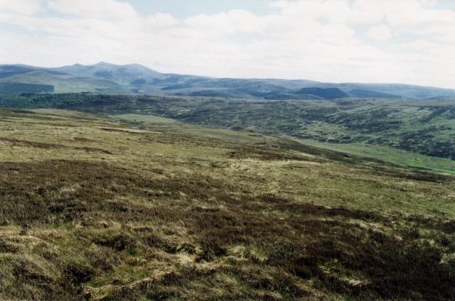 Moorland above Croick
