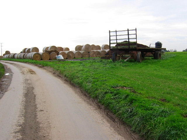 Farmland South of Burshill