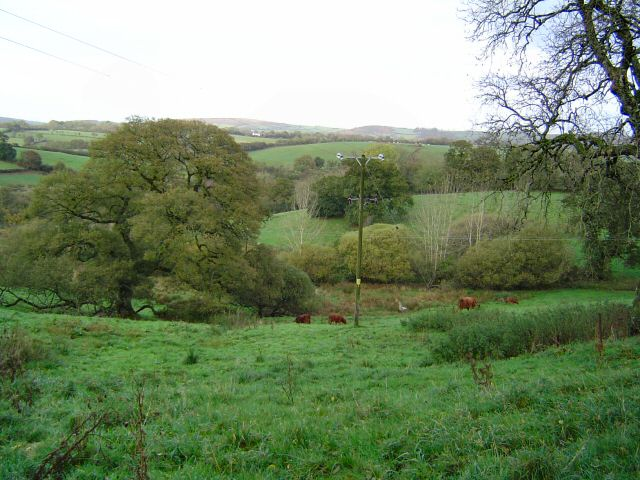 Countryside near Langstone - Dartmoor