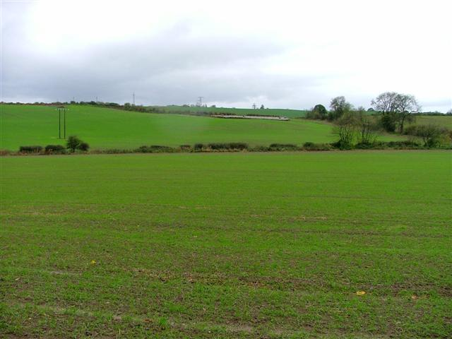 View West From Dere Street