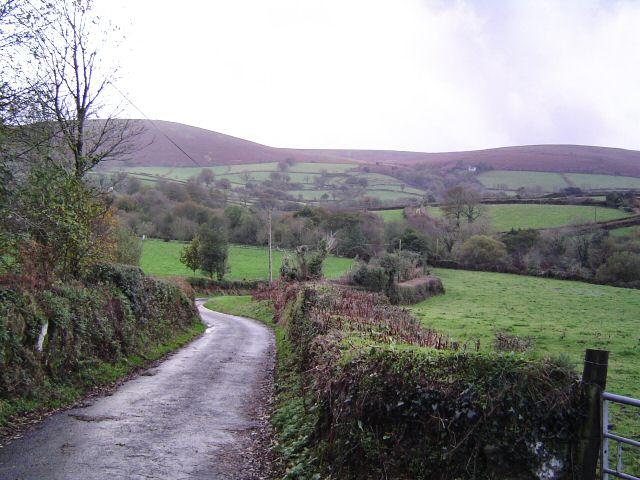 Lane to Shapley and Hookner - Dartmoor