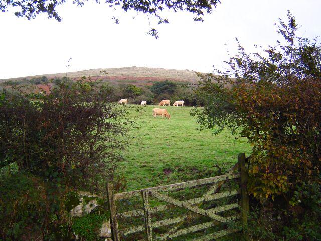 Easdon Tor from the road - Dartmoor