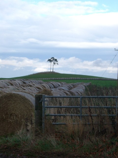 Fields and Hillock nr Humbie Mains