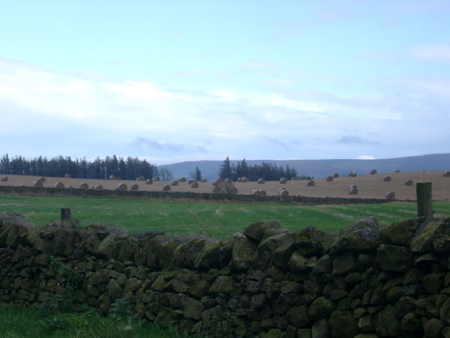 Farmland near Long Newton