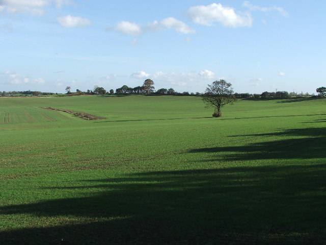 Farmland near Nostell Priory.