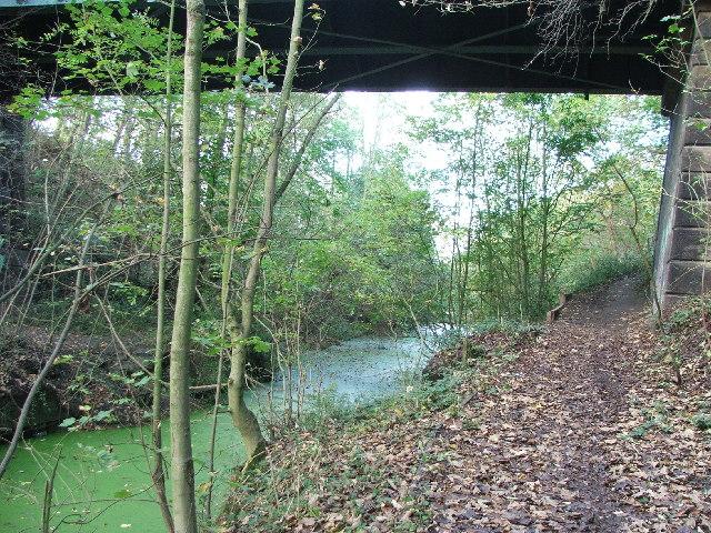 Barnsley Canal beneath High Bridge at Notton.