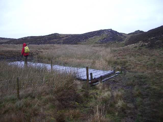Bridge over wet ground