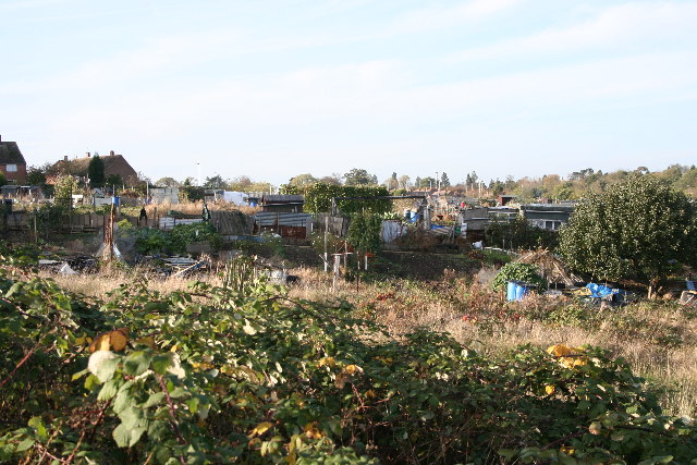 Allotments, near Darlington Road, Leicester