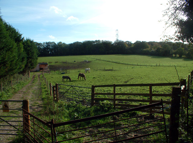 Countryside east of North Cudham Lane BR6