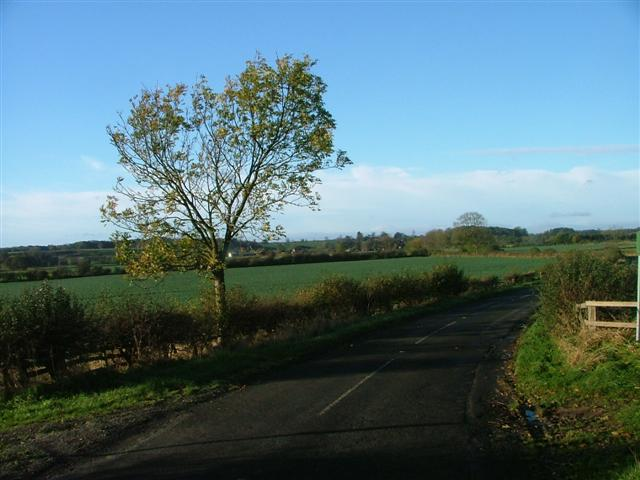 View South West From the Foot of Trafford Hill