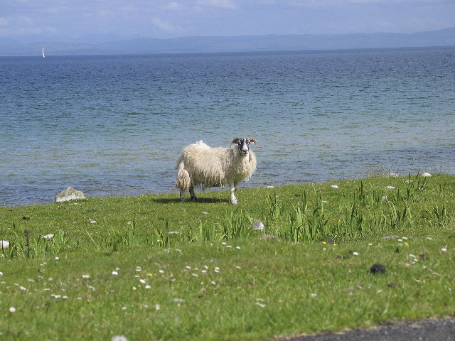 Local Resident, Claggain Bay