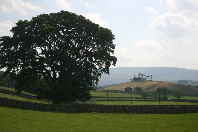 View towards Lady Hill from Woodhall