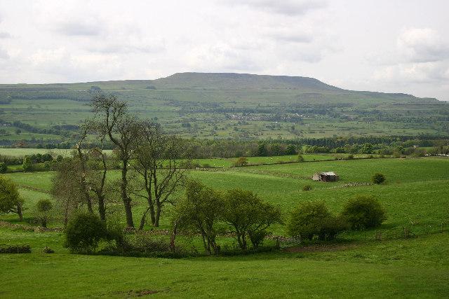 Farmland at the West end of the Leyburn Shawl