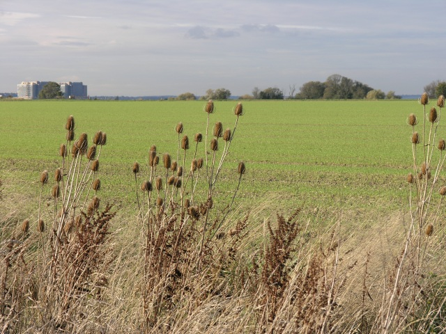 Arable Fields, with Nuclear Power Station In The Distance