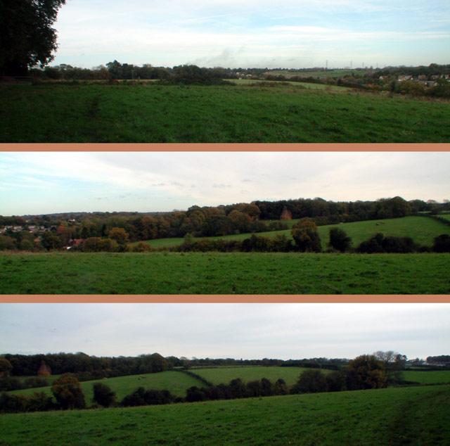 Countryside west of Pratt's Bottom, BR6