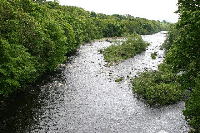 The River Tees upstream of Winston Bridge