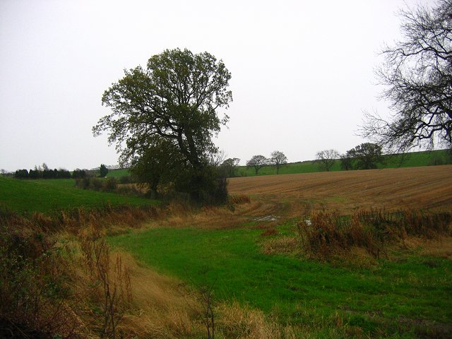 Wet farmland, Porterside.