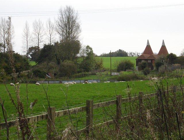 Oasts near Bowley Farm