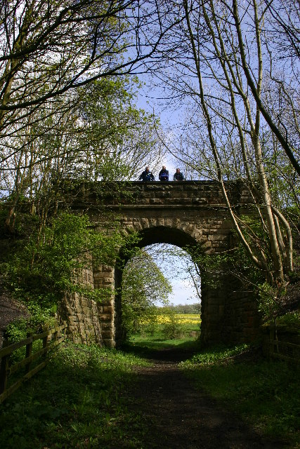 Disused Railway Bridge by Bellburn Wood