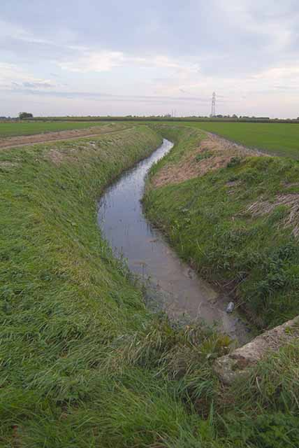 Drain on Gedney Fen