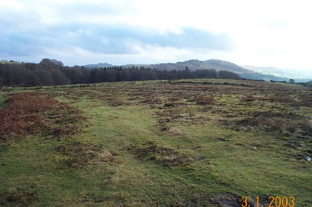 Near Natsworthy - Dartmoor