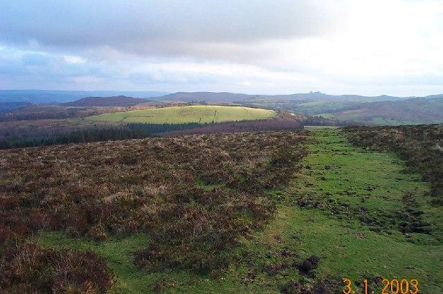 Near King Tor - Dartmoor